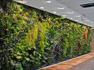 دیوار سبز وال گاردن